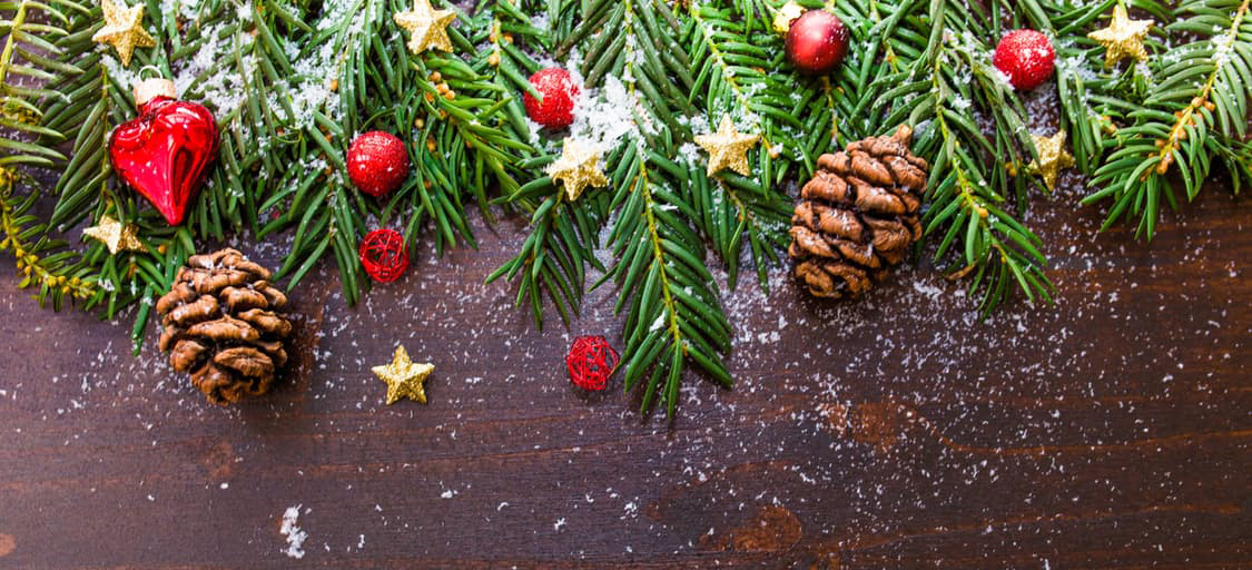 Echo Web Solutions Christmas Review 2016
