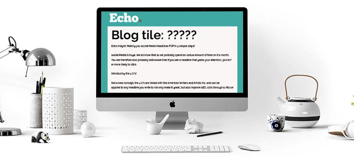 Echo Insight